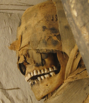 Mummy from Rosicrucian Museum (not from the discussed sample)