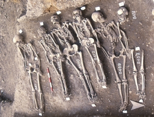 Skeletal Remains from the East Smithfield Excavation, via Museum of London