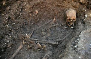 Skeleton of King Richard III (Maybe), via University of Leicester