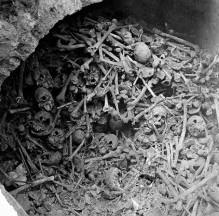 Are bubonic plague mass grave
