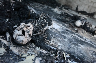 Charred skeletal remains of what appears to be detainees executed by the Khamis Brigade. © 2011 Human Rights Watch