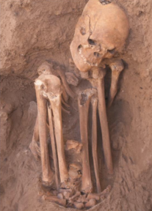 Vertically excavated adult burial from PPNB Tell Halula, via