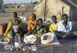 The Aboubakar family of Breidjing Camp  Food expenditure for one week: 685 CFA Francs or $1.23, via Daily Kos Fricat and photos by Peter Menzel