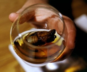 """The """"Sourtoe"""" in Whiskey, via Lab Rover"""