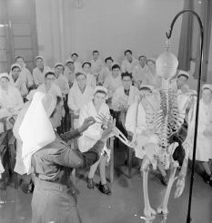 Sister-Tutor Mackenzie uses a skeleton to explain to a group of student nurses that the bones in the fingers are known as 'phalanges' during an anatomy class at St Helier Hospital, via Wikimedia