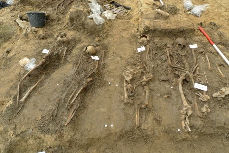Skeletons from Middenbeemster excavation, via Lab for Human Osteoarchaeology