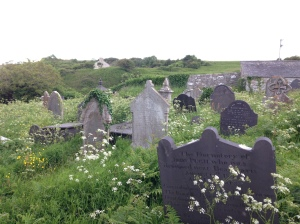 An unmaintained cemetery from Wales that shows how little interaction is occurring there..., via Bones Don't Lie