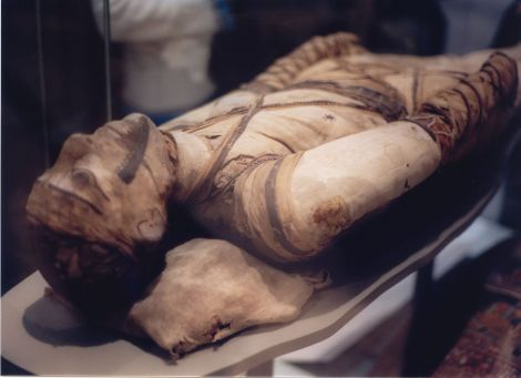 """Mummy at British Museum"". via Wikimedia Commons"