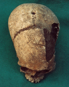 Skull with drilled hole for hanging, from Nelson and Martin (2015)