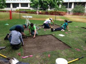 Field Work at MSU this summer