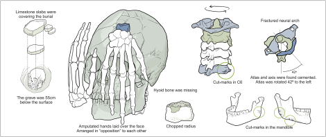 Fig 5 from Strauss et al. (2015) Schematic representation of Burial 26 from Lapa do Santo. Drawing by Gil Tokyo. doi:10.1371/journal.pone.0137456.g005