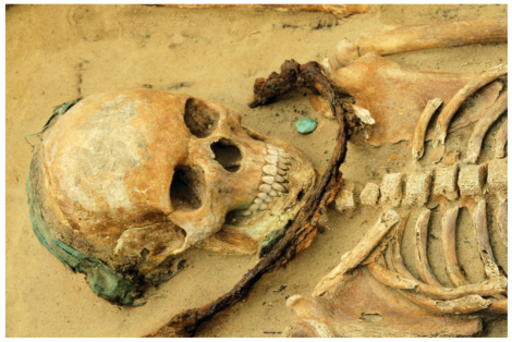 Skeleton of a teenage girl with a sickle on the throat, a copper headband across the skull and a copper coin below the mandible, via Polcyn and Gajda 2015