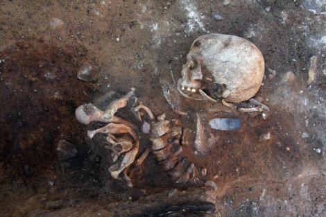 Photo of the upright burial during excavation, shows the mixed bones and parts of the spine in anatomical position. (photo: A. Kotula, via Terberger et al. 2015)
